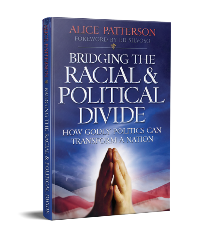 Bridging the Racial & Political Divide – PDF